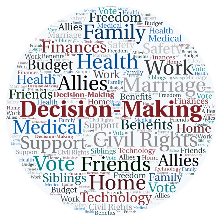 Word art with words about supported decision-making. The largest words are Freedom, Family, Health, Allies, Decision-Making, Medical, Vote, Friends, and Home.