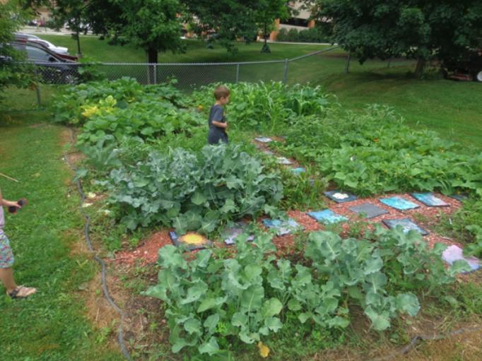 Boy walking through Waisman Early Childhood Program garden. Green plants and stepping stones.