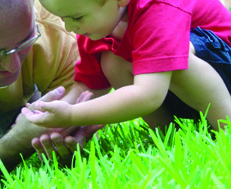grandfathre with grandson looking at insect in grass page 33