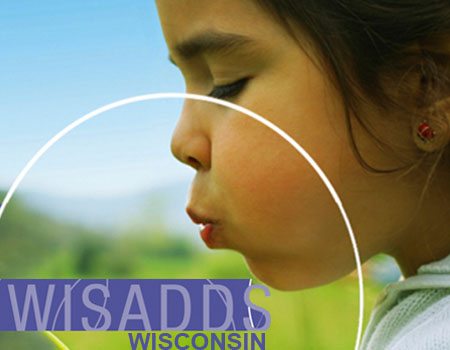 Wisconsin Surveillance of Autism and Other Developmental Disabilities photo on website